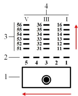 Рисунок 2. Расположение и нумерация контактных групп, контактных пружин и выводов обмоток телефонного реле типа РПН